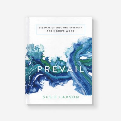Prevail by Susie Larson